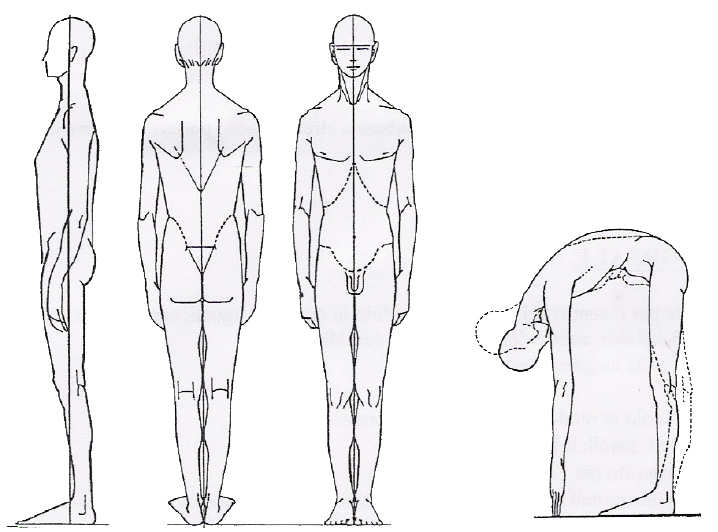 analisi-posturale2